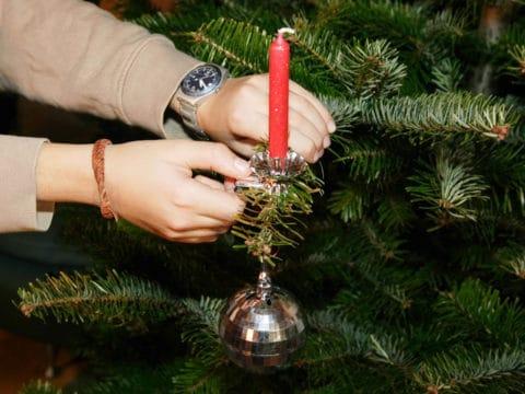 Kerze wird am Christbaum befestigt
